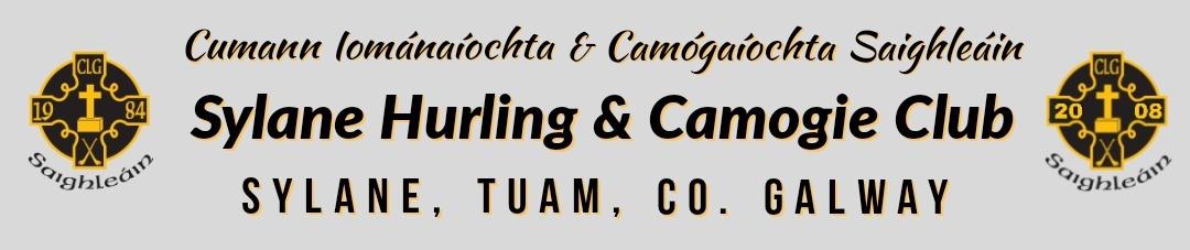 Sylane Hurling & Camogie Club
